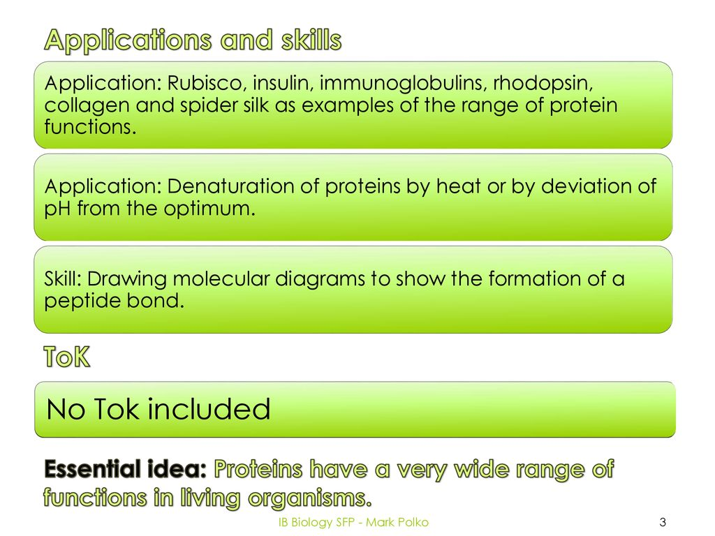 Topic 2 Molecular biology - ppt download