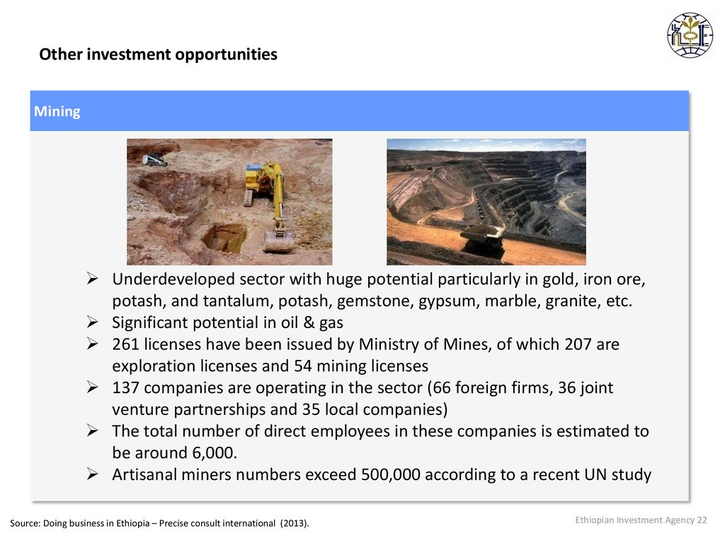 Overview of Ethiopian Investment Opportunities and Policies - ppt