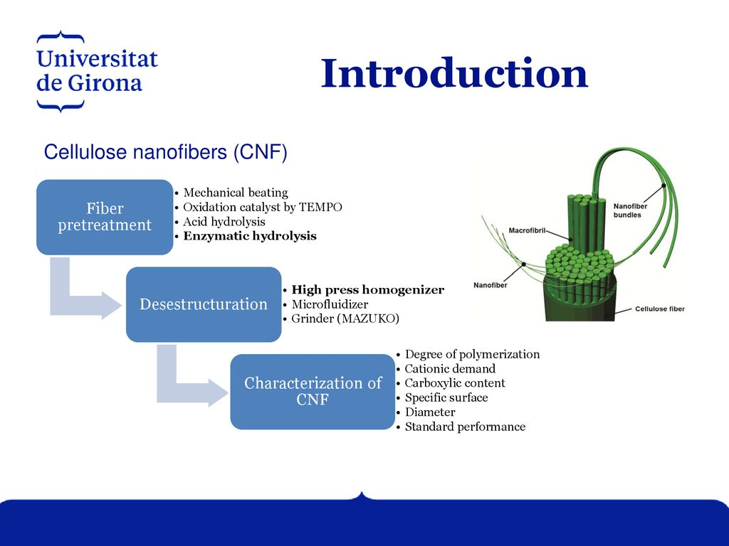 Optimization of enzymatic hydrolysis on nanofibers production for