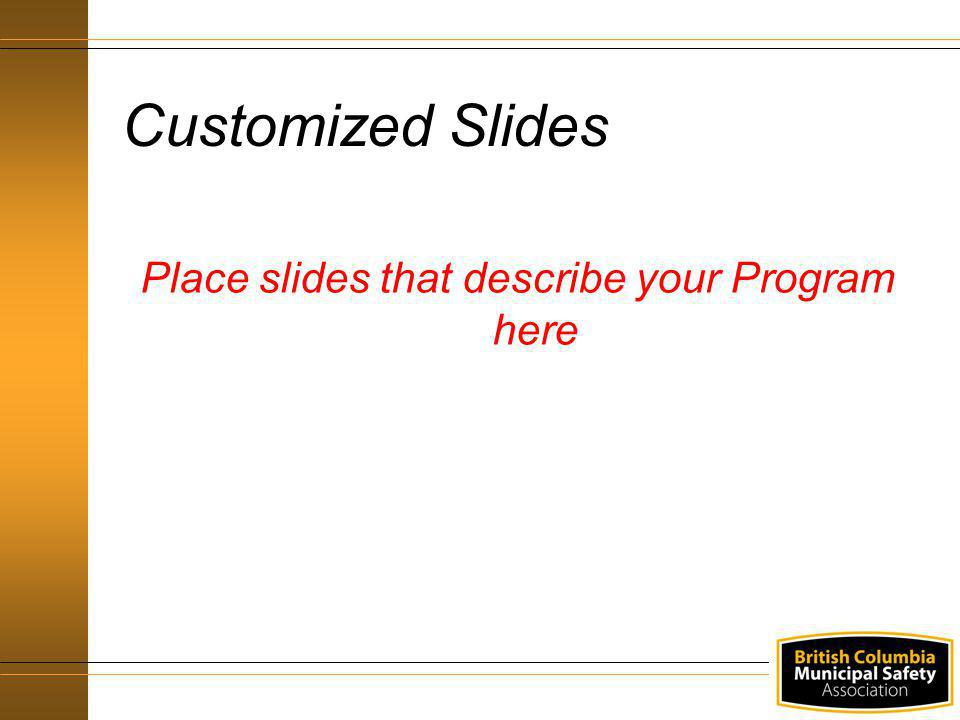 Place slides that describe your Program here