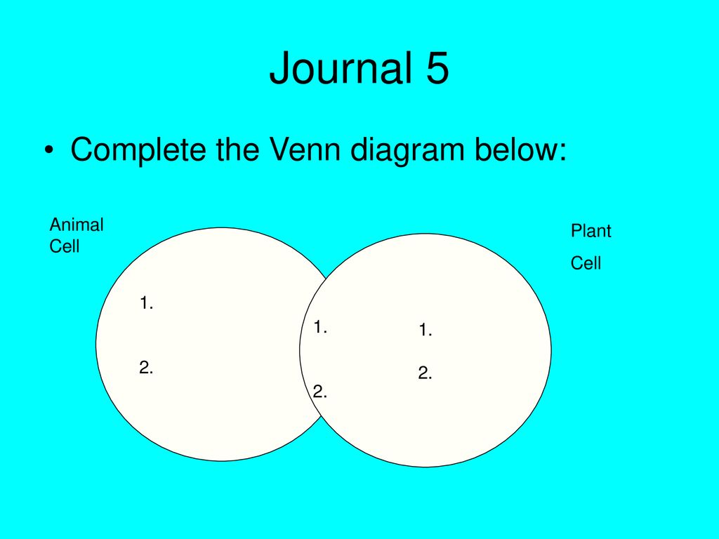 The Cell Membrane Diffusion And Osmosis Ppt Download Slide Plant Diagram 1 2 Journal 5 Complete Venn Below Animal