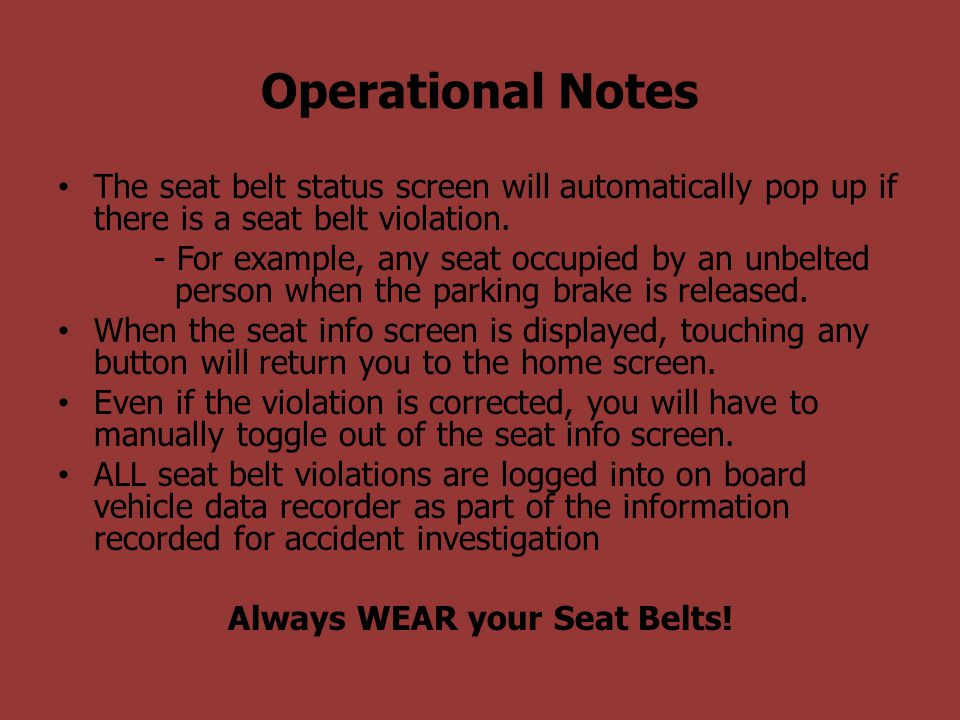 Always WEAR your Seat Belts!