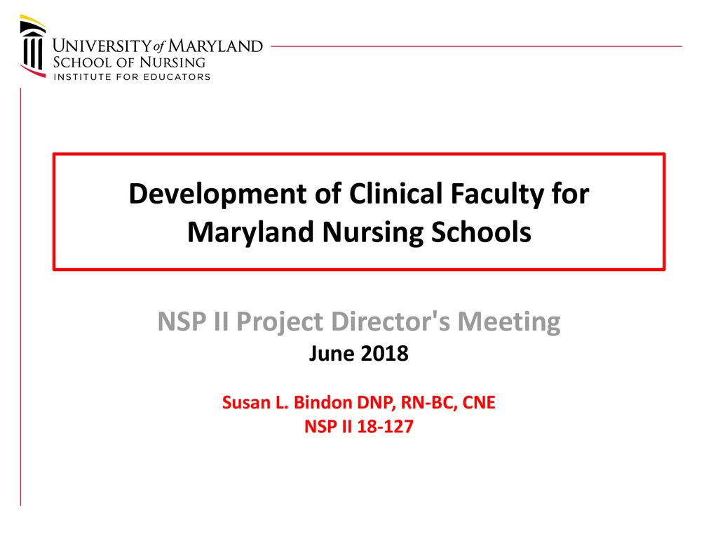 Development of Clinical Faculty for Maryland Nursing Schools