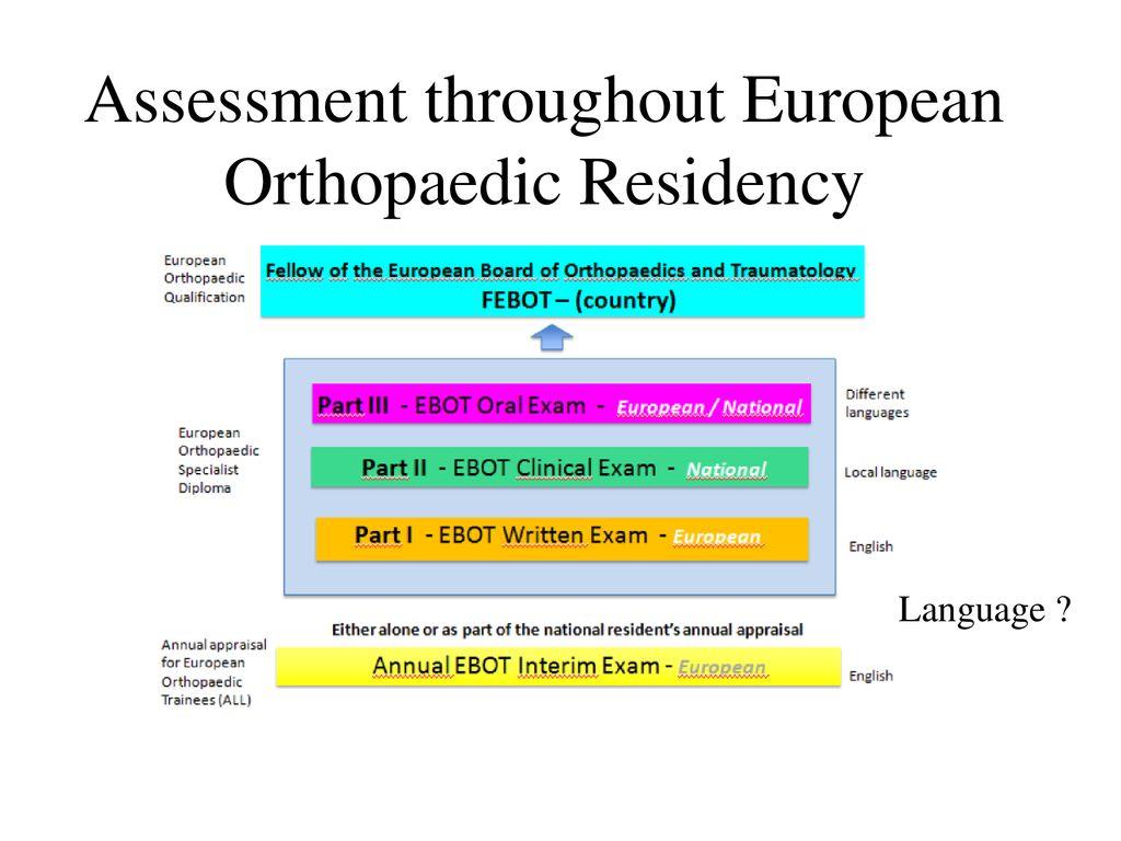 Development of a Curriculum of Orthopaedics and Traumatology - ppt