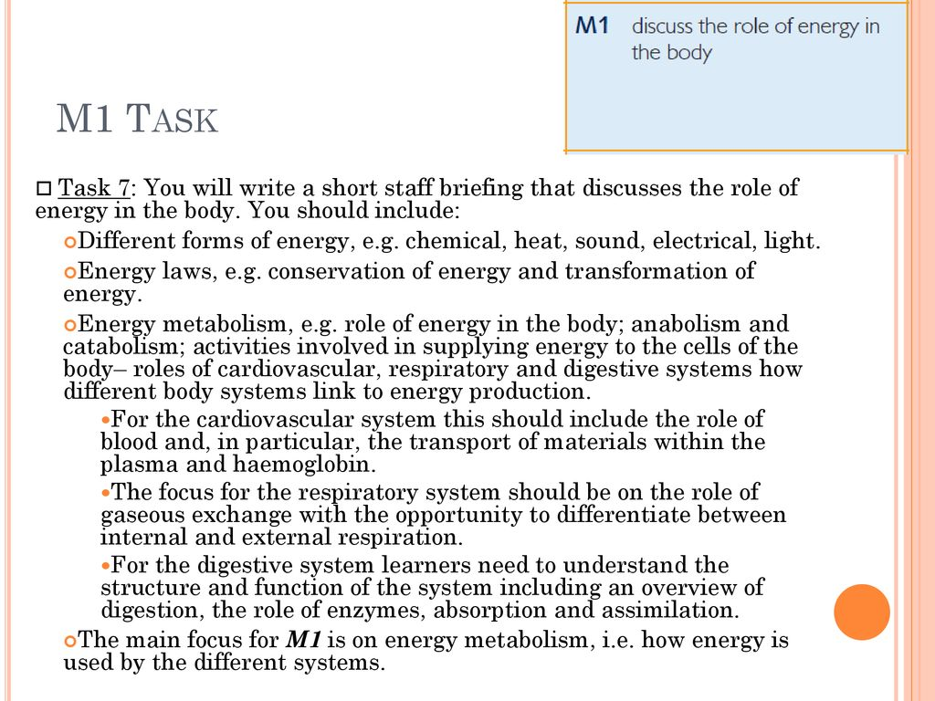 m1 discuss the role of energy in the body