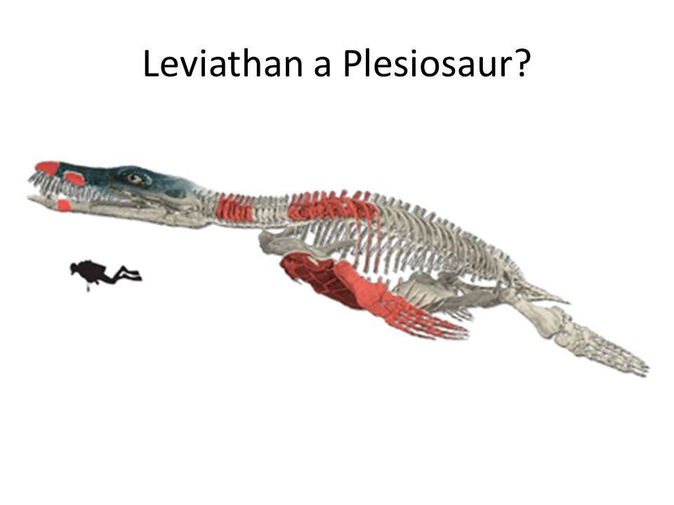 Dinosaurs are probably used more than anything else to