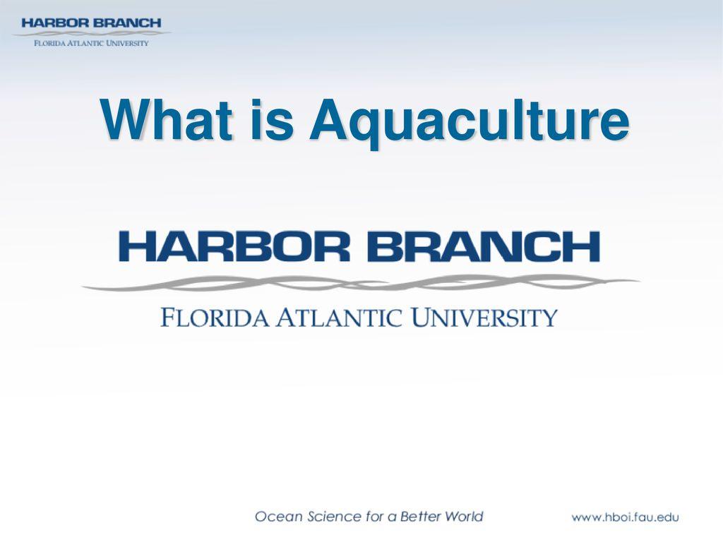What is Aquaculture – New Fish Farming methods – Urban