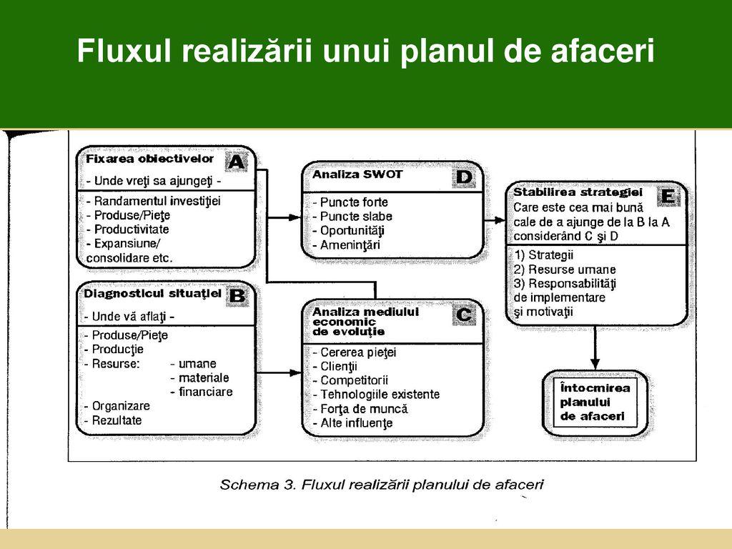Planul De Afaceri Studiu De Fezabilitate Ppt Download