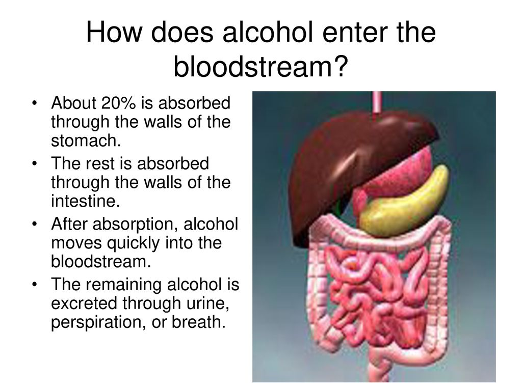 alcohol and aspirin are absorbed into the bloodstream from the a magas vérnyomás aritmiás tünetei