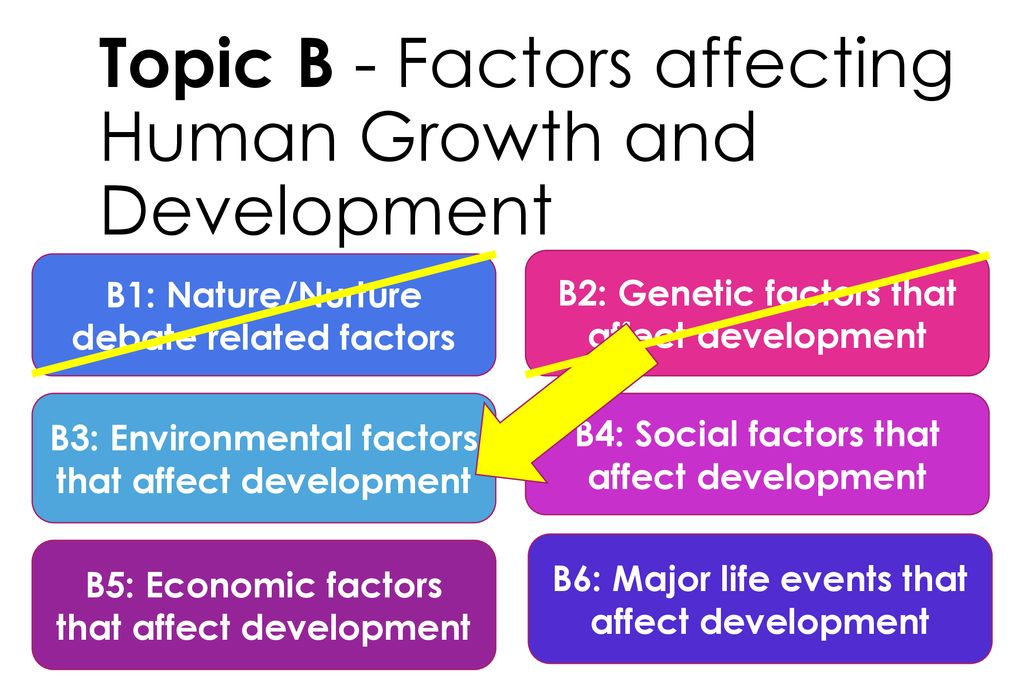 a4cae14cea0ea Topic B - Factors affecting Human Growth and Development - ppt download