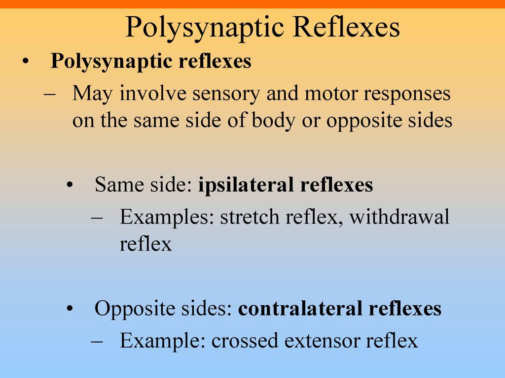 example of ipsilateral reflex