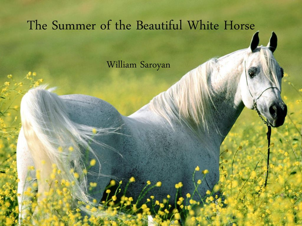 The Summer Of The Beautiful White Horse Ppt Download