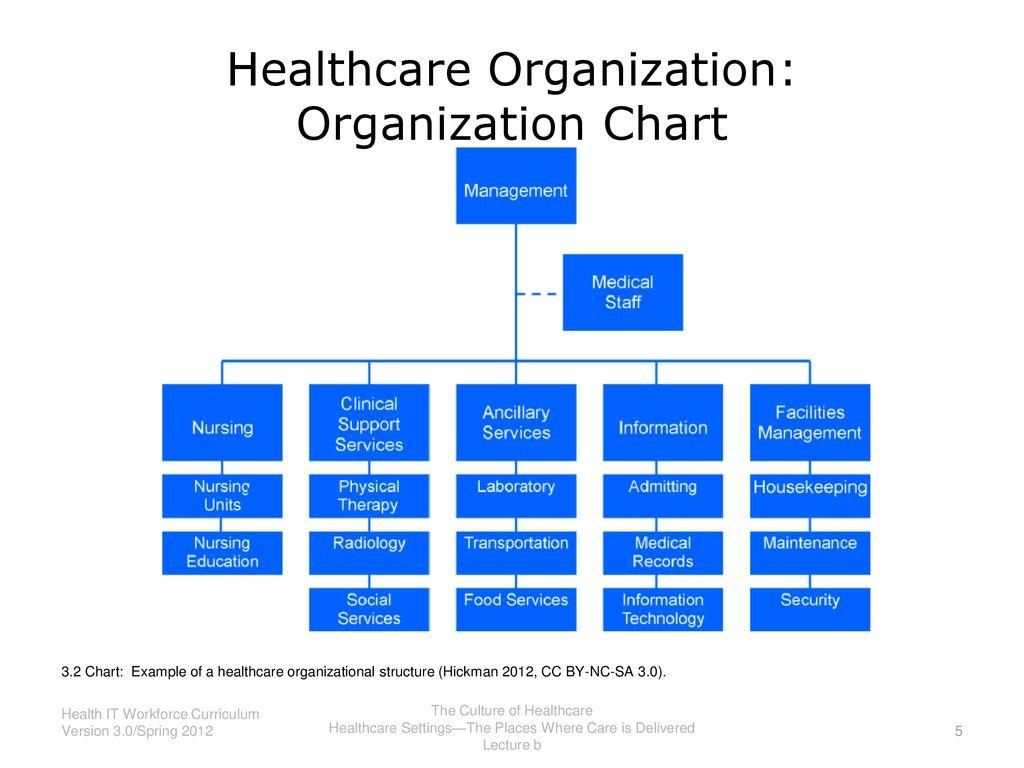5 Healthcare Organization Chart