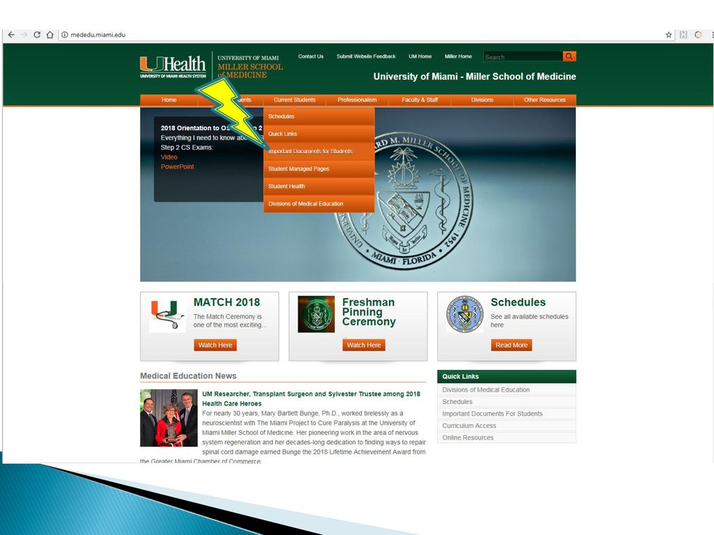 University of Miami Miller School of Medicine - ppt download Throughout University Of Miami Powerpoint Template