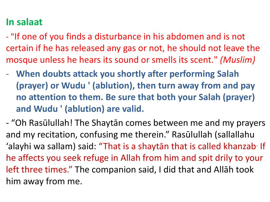 The aims of the shaytaan - ppt download