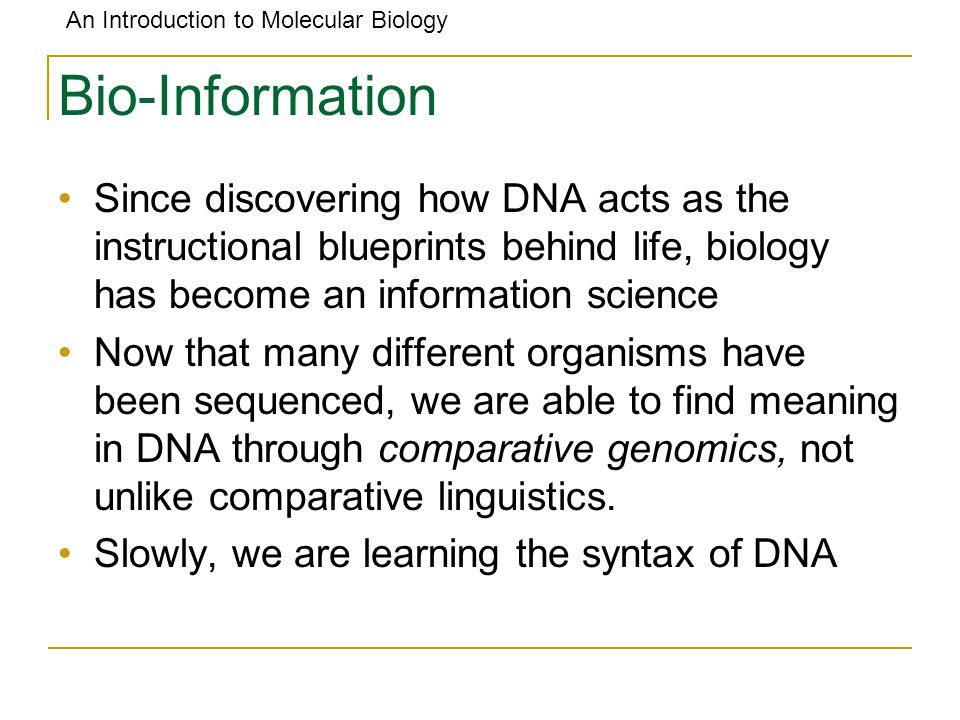 Outline what is life made of what molecule codes for genes ppt bio information since discovering how dna acts as the instructional blueprints behind life biology malvernweather Gallery