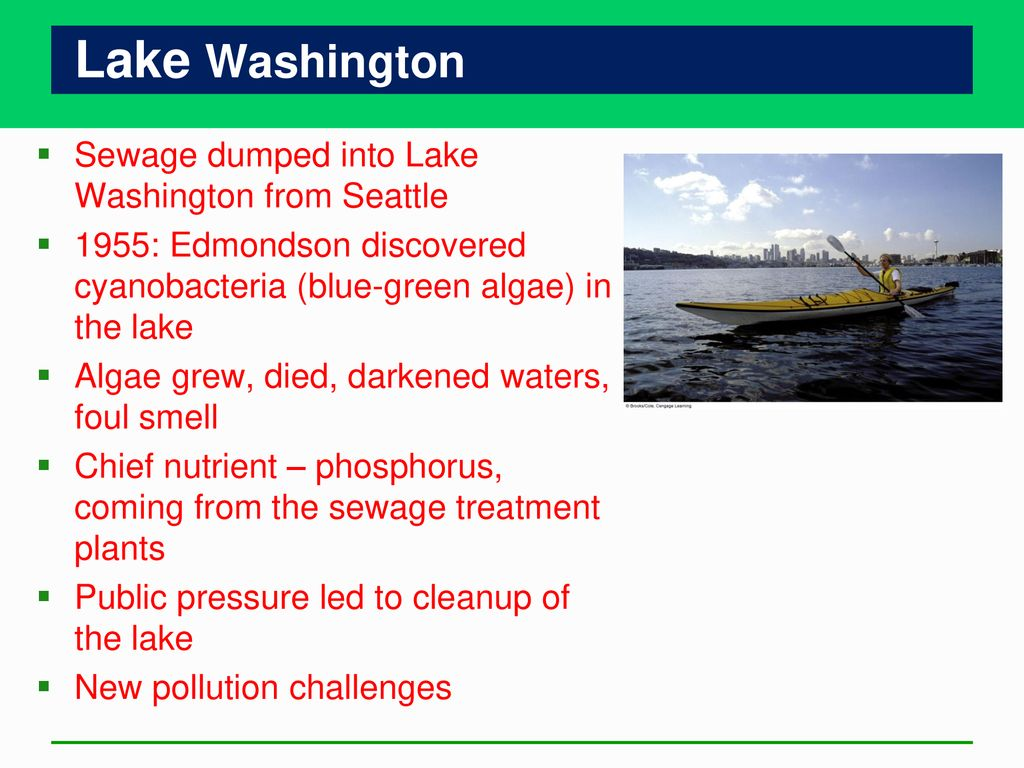 Water Pollution Chapter ppt download