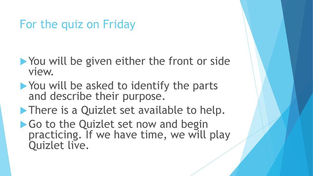 Urinary System Quiz Quizlet