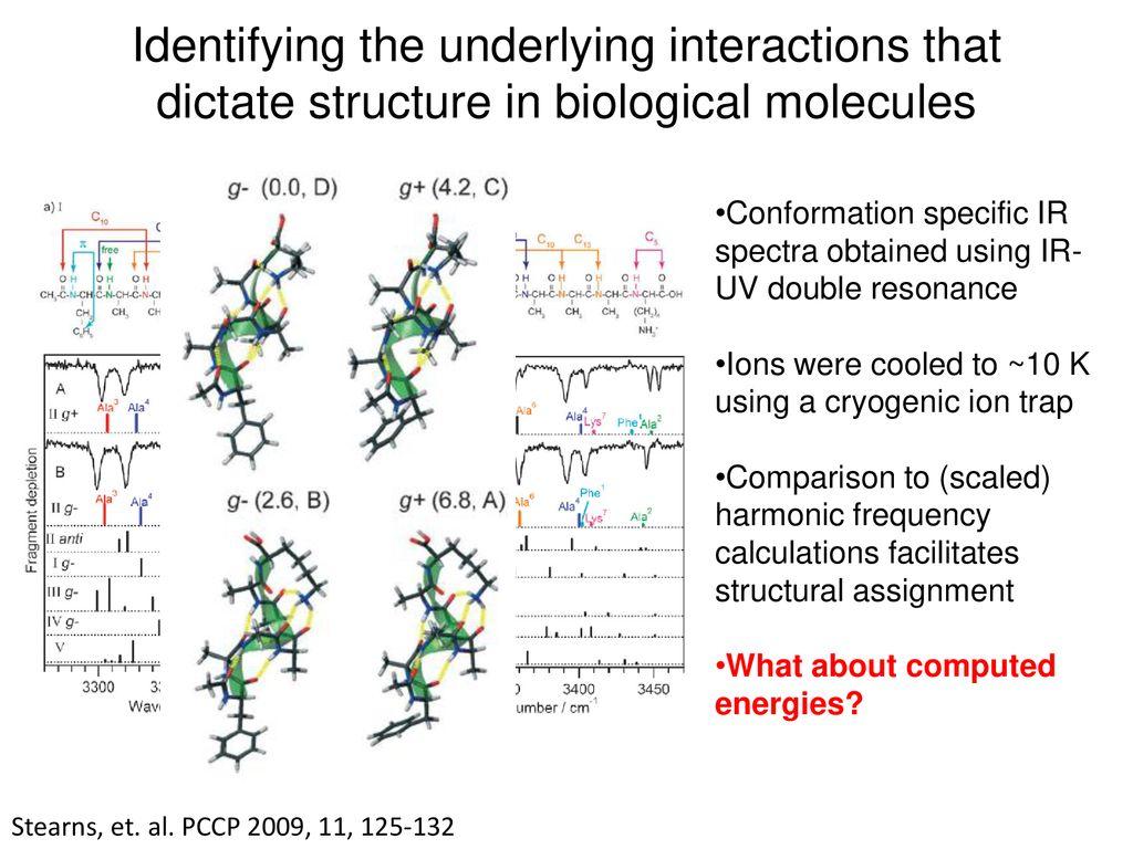 molecular factors underlying rate - HD1024×768