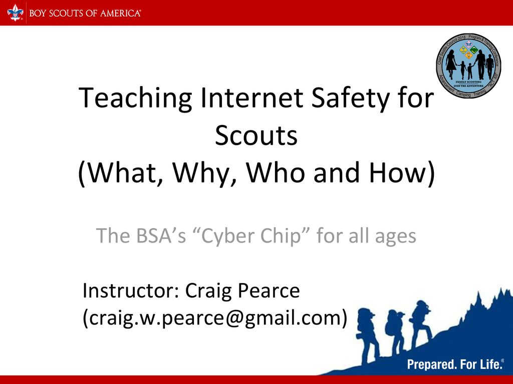 picture regarding Bsa Cyber Chip Green Card Printable known as Schooling Website Basic safety for Scouts (What, Why, Who and How