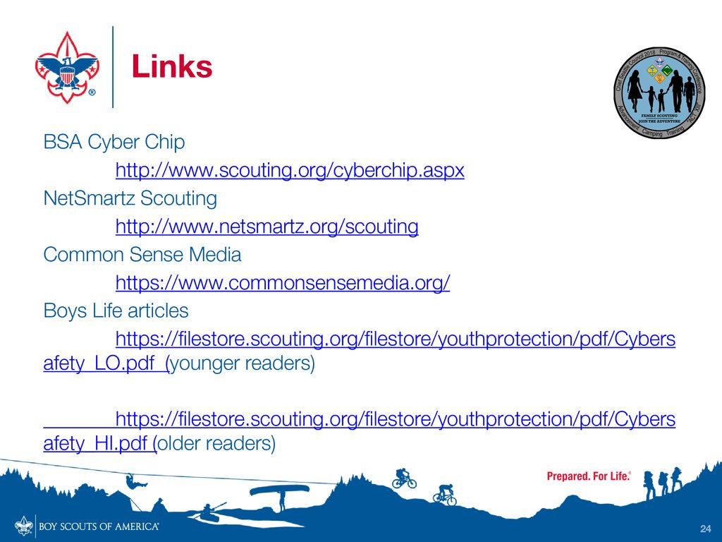 graphic about Bsa Cyber Chip Green Card Printable identified as Instruction Web Security for Scouts (What, Why, Who and How