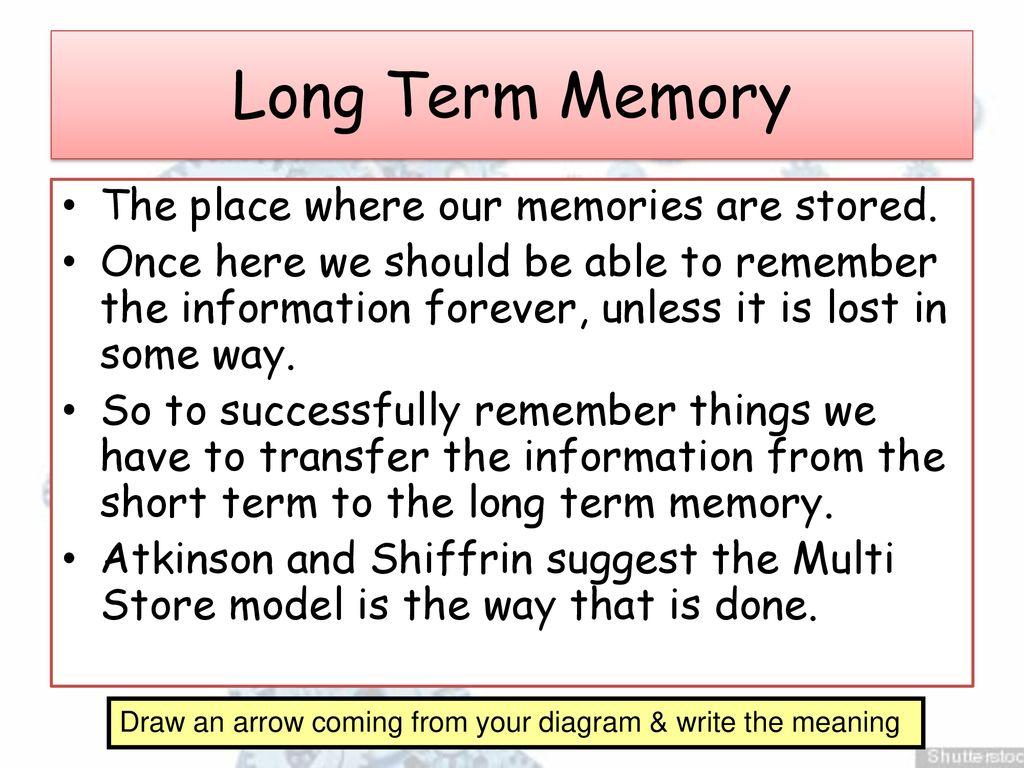 Cognitive Psychology Memory – L2 - ppt download