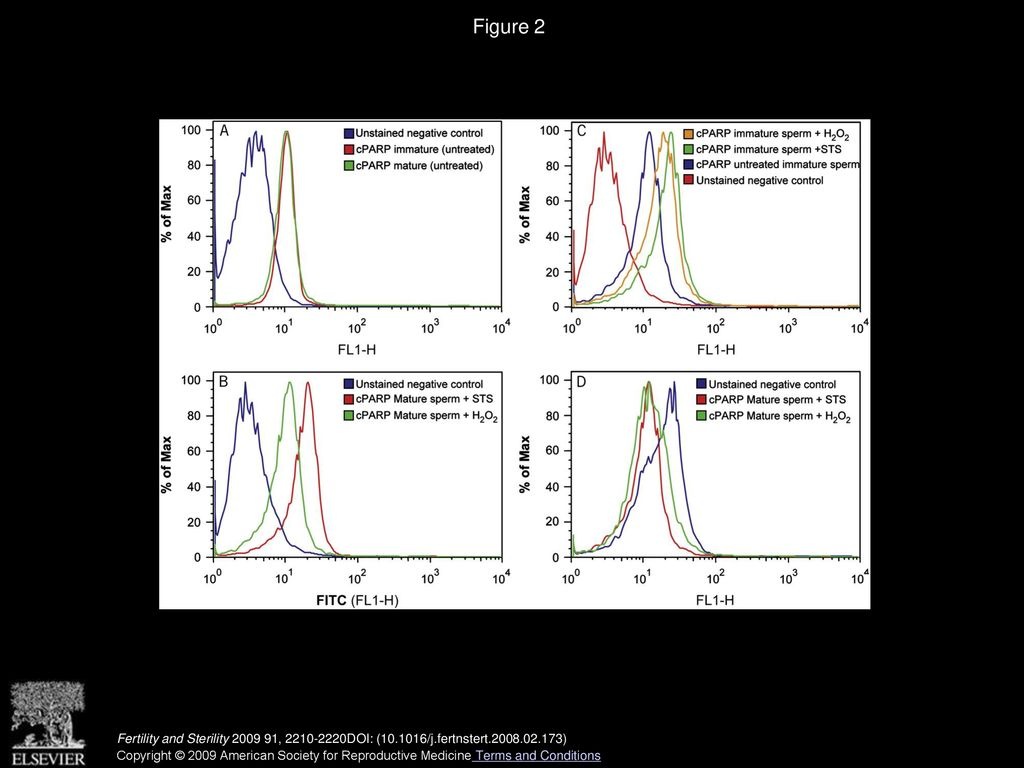 Evaluation of poly(ADP-ribose) polymerase cleavage (cPARP) in