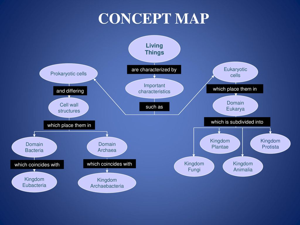 Living Organisms Concept Map Living Things Are Characterized By Such As And Differing Mensa For Kids Mind Stretcher 423 Ppt Download