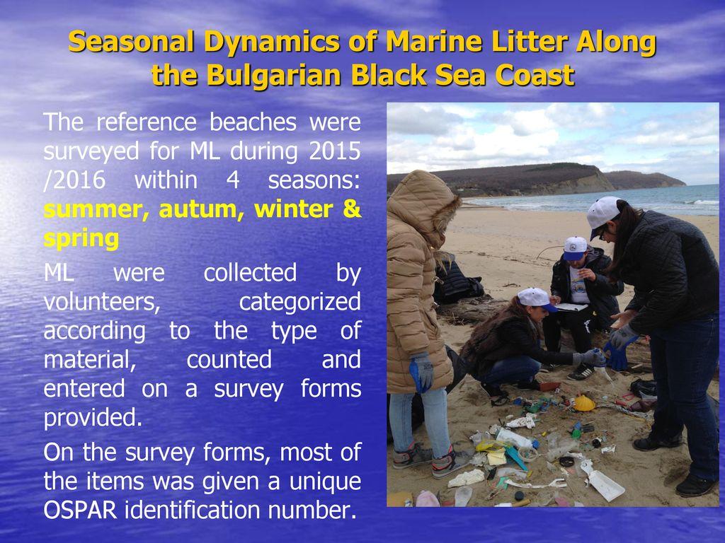 Seasonal Dynamics of Marine Litter Along the Bulgarian Black