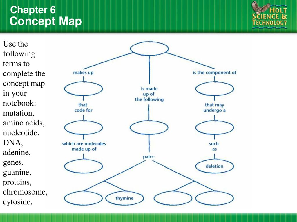 Mutation Concept Map.What Does Dna Look Like Do Now Section 1 Ppt Download