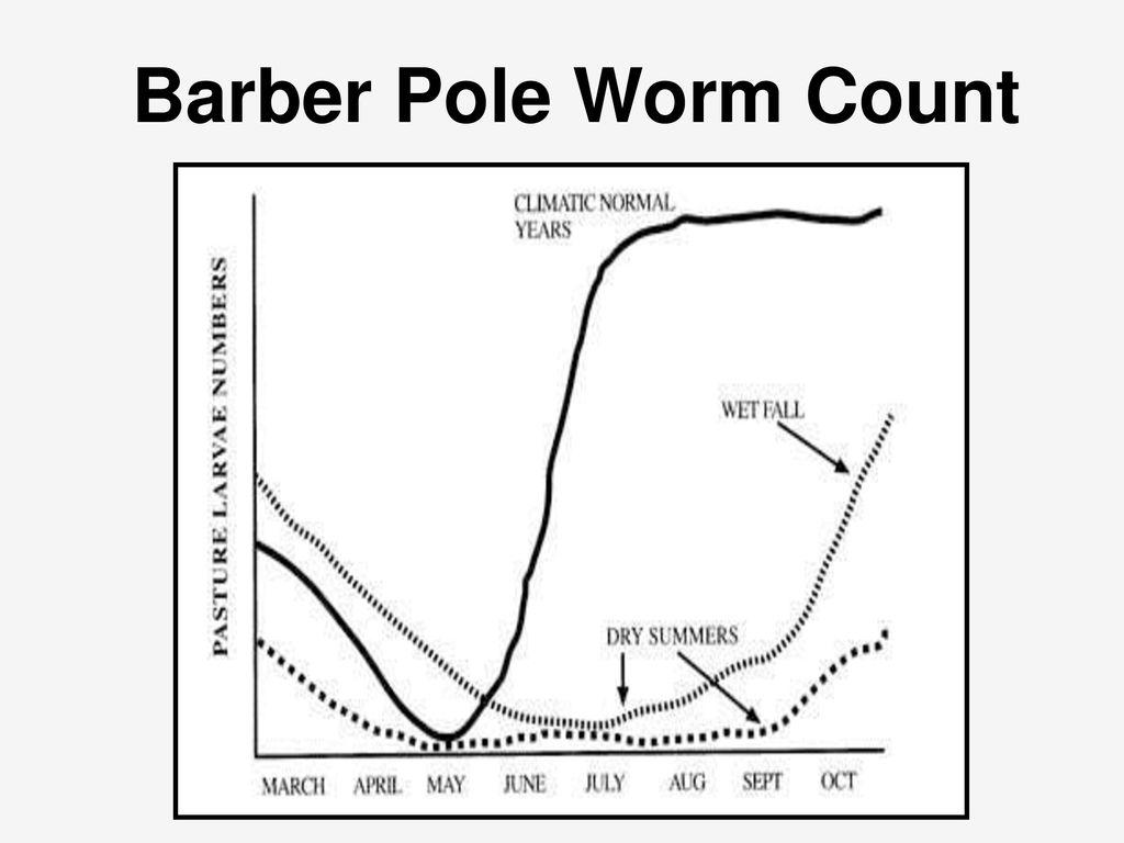 Barber Pole Wiring Diagram on barber shop pole, barber s pole, barber pole parts diagram,