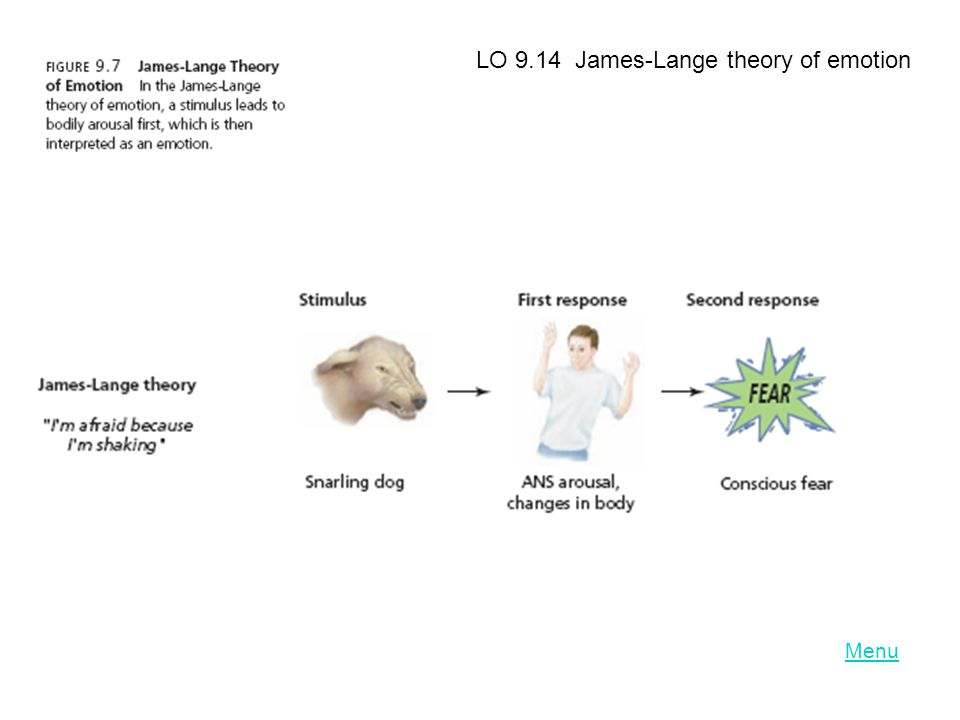 LO 9.14 James-Lange theory of emotion