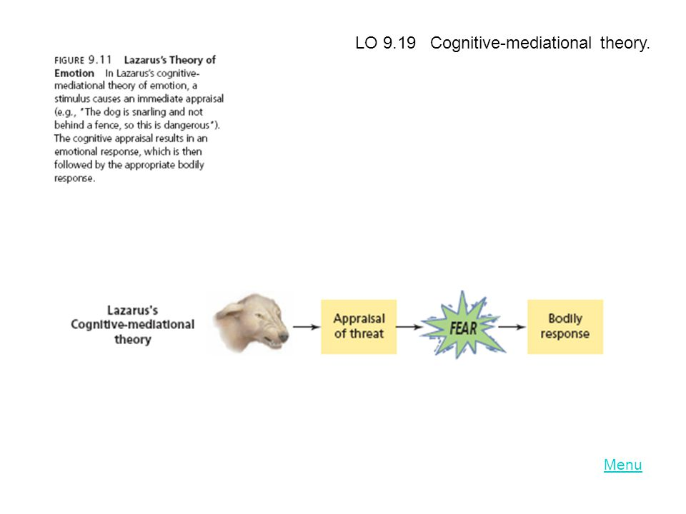 LO 9.19 Cognitive-mediational theory.