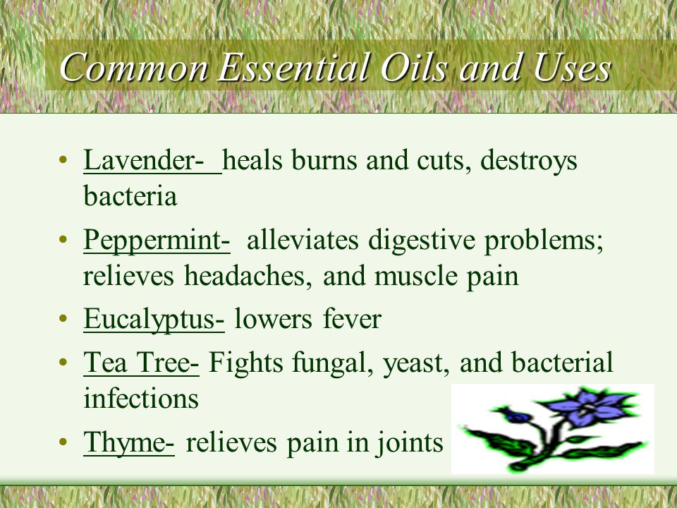 Common Essential Oils and Uses