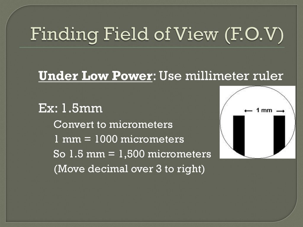 Microscopes and Basic Measurement - ppt download