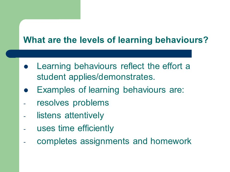 What are the levels of learning behaviours