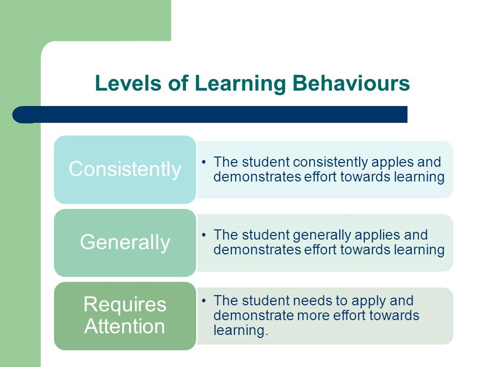 Levels of Learning Behaviours