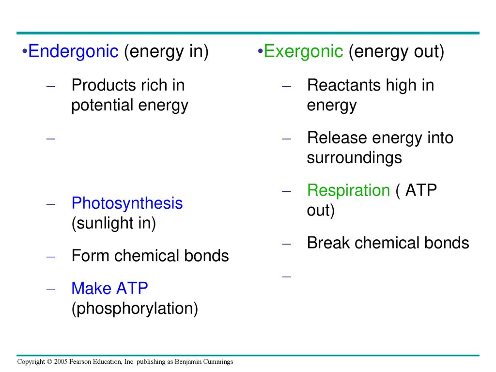 Activation Energy BioNinja