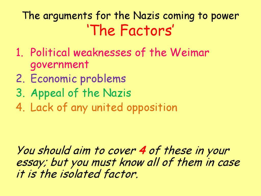 nazi rise to power essay