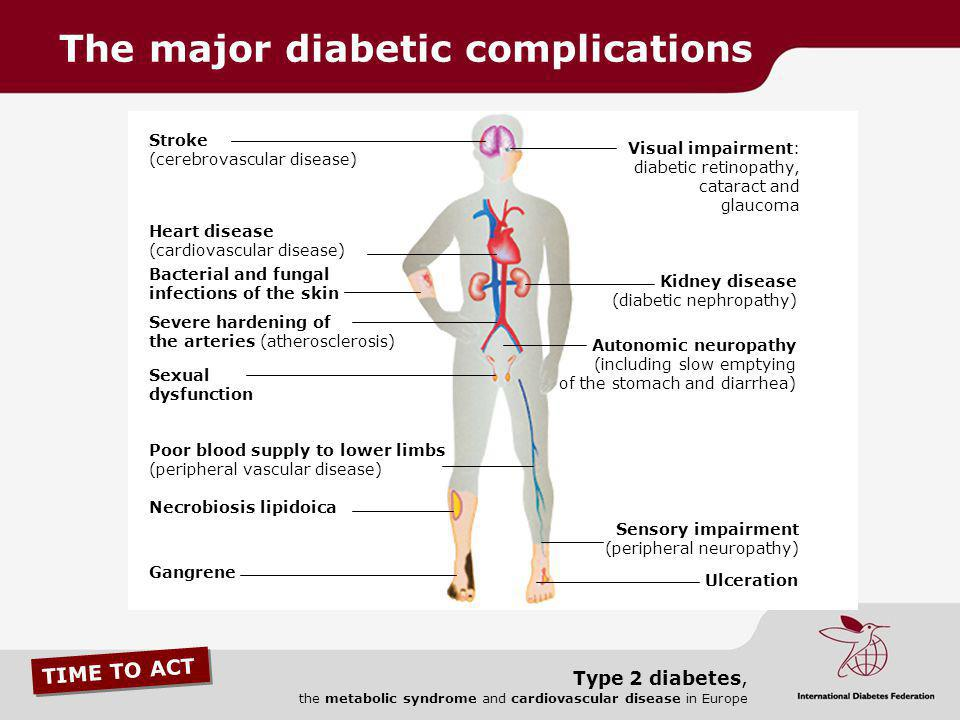 TIME TO ACT Type 2 diabetes, the metabolic syndrome and
