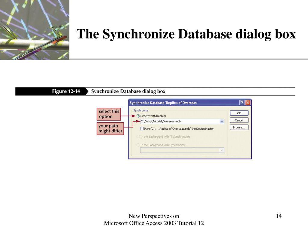 The Synchronize Database Dialog Box