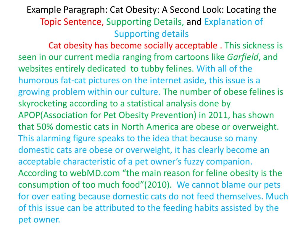obesity paragraph