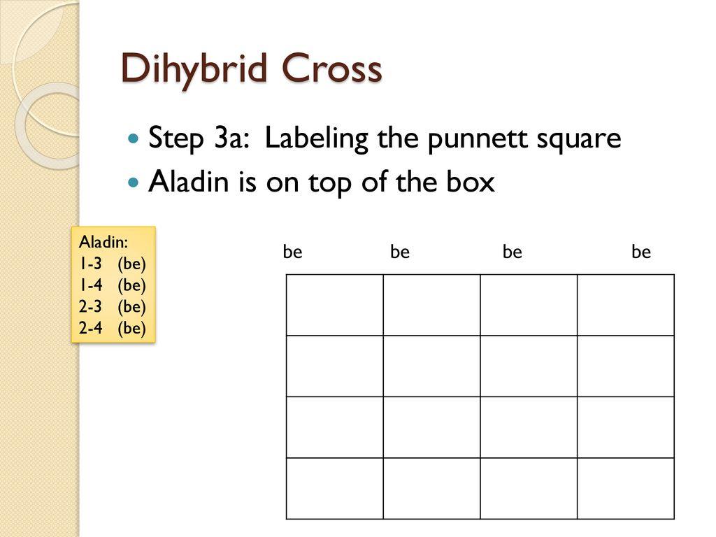 Dihybrid Cross  - ppt download