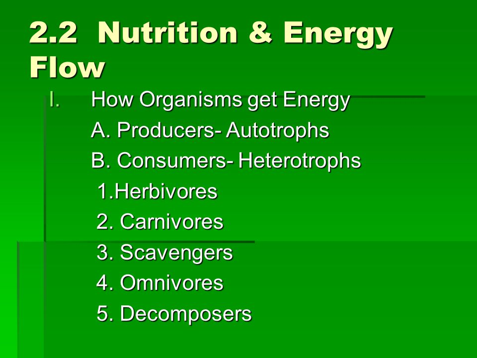 2.2 Nutrition & Energy Flow