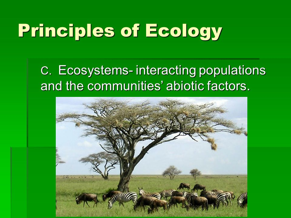 Principles of Ecology C. Ecosystems- interacting populations and the communities' abiotic factors.