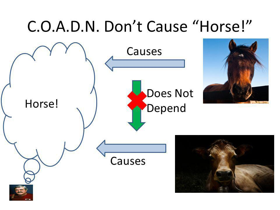 C.O.A.D.N. Don't Cause Horse!