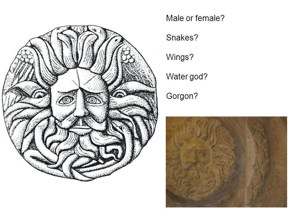 Male or female Snakes Wings Water god Gorgon