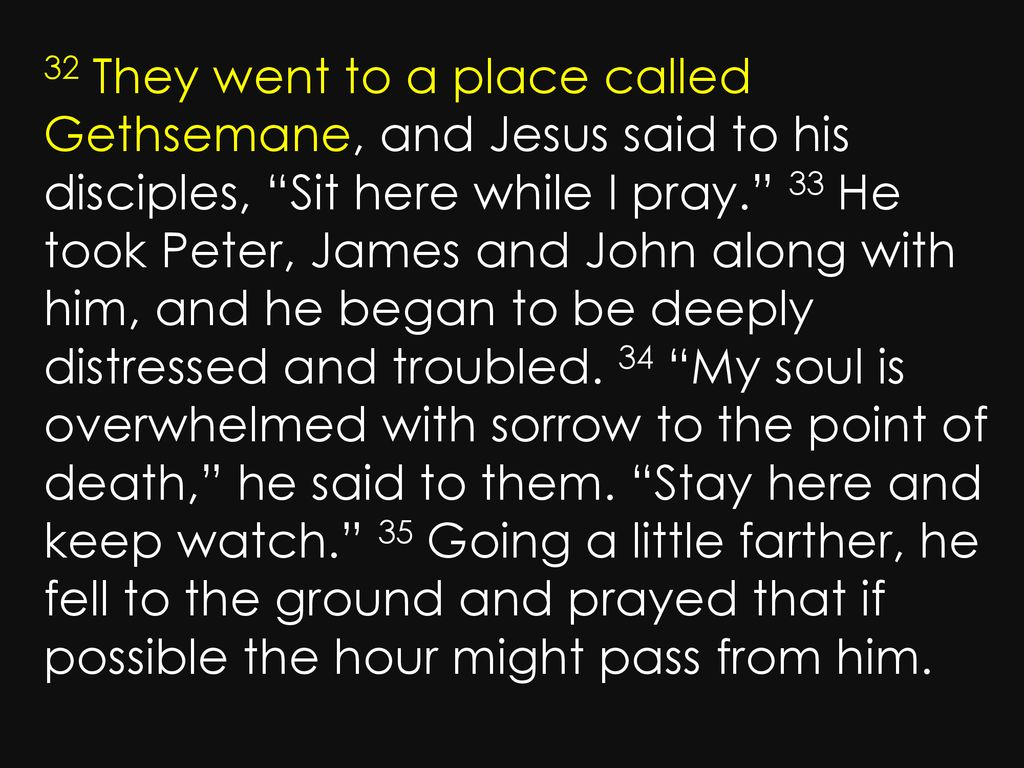 Mark 14: Mark 14: They went to a place called Gethsemane