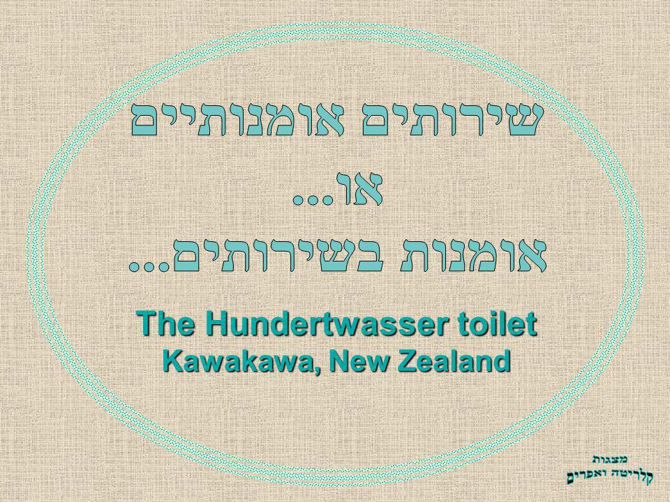 The Hundertwasser toilet