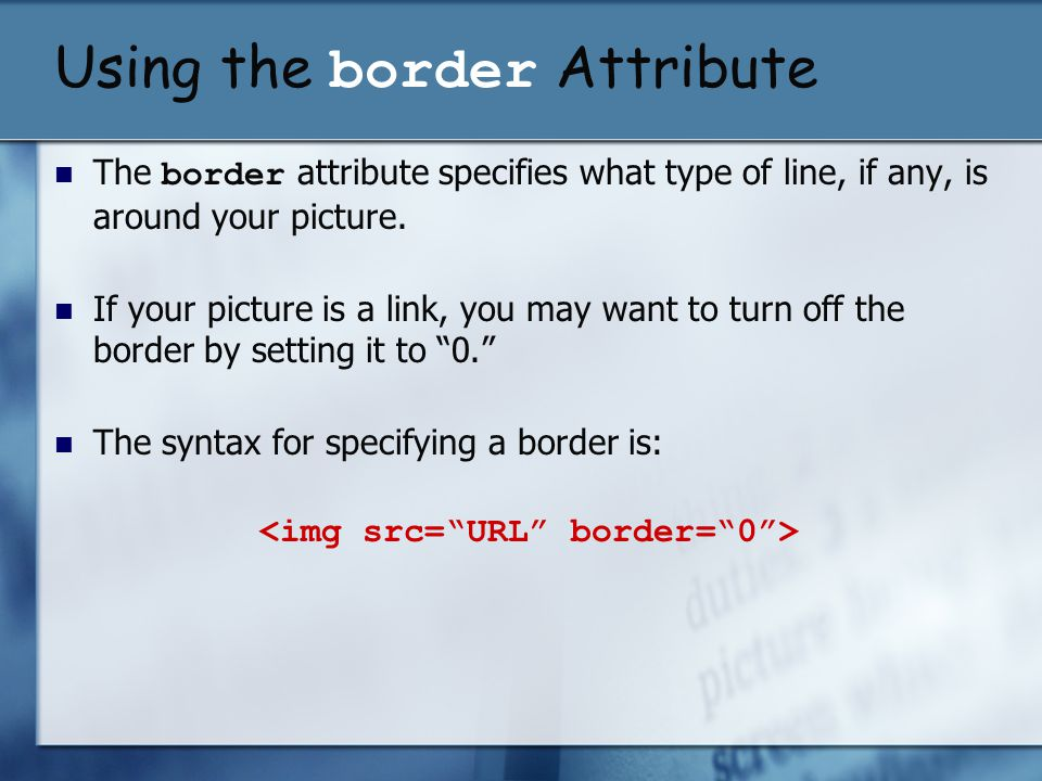Using the border Attribute